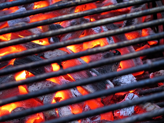 Gas Oder Holzkohlegrill Was Ist Besser : Grill test die top 5 der besten grills in unserem vergleich