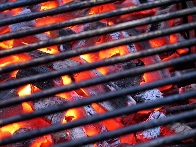 Gas Oder Holzkohlegrill Test : Einsteigergrill tepro toronto lidl grill obi angular test